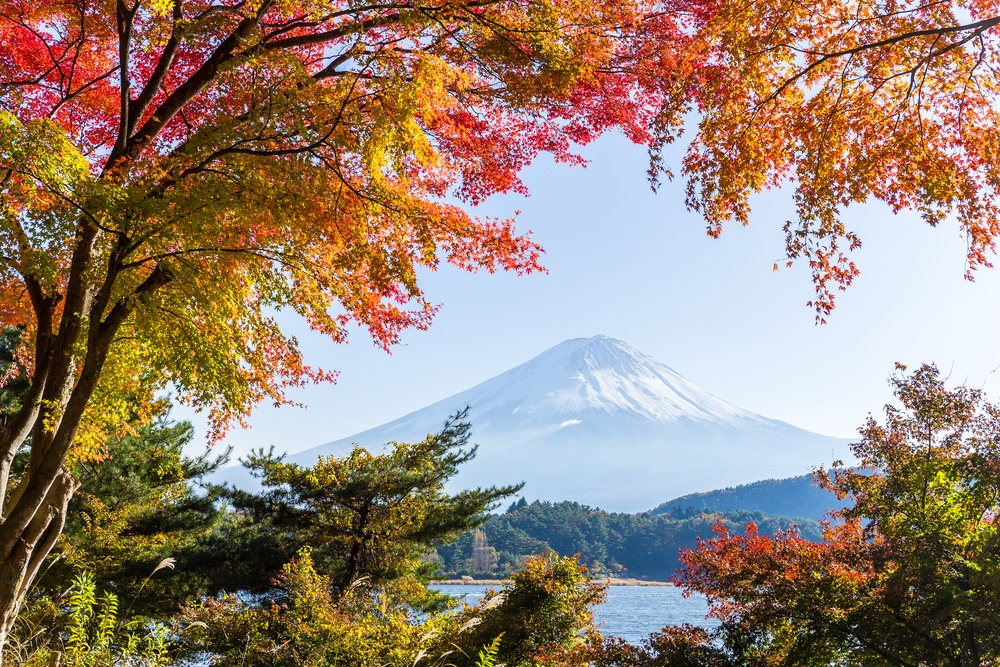 Mount Fuji in Autumn season